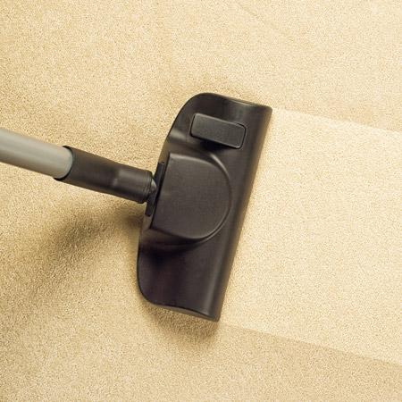 Clean Vacuumed Carpet Stripe